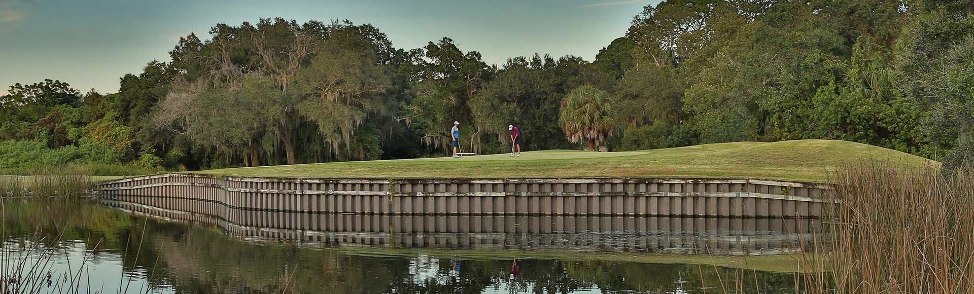 Two men are putting on the green. below is a pond with a retainment wall holding back the land. it s a nice day out and the background is filled with palm trees and oak trees. the sky is blue.